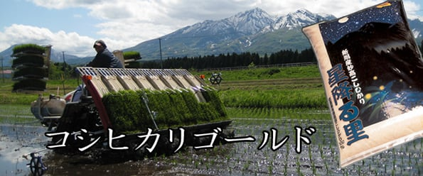 http://www.koide.gr.jp/files/libs/374/201705081943236325.jpg