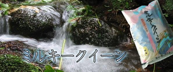 http://www.koide.gr.jp/files/libs/385/20170508195041310.jpg