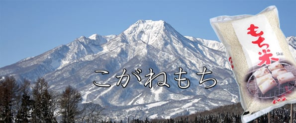 http://www.koide.gr.jp/files/libs/391/201705081954179233.jpg